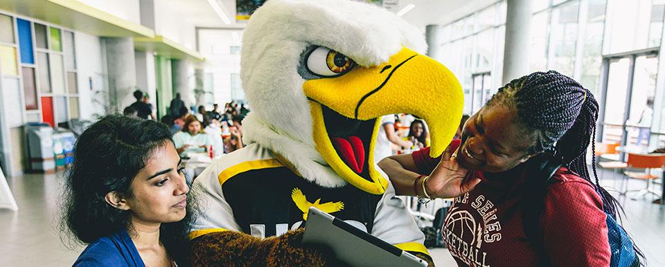 houston community college programs